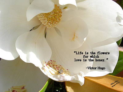 Victor Hugo 2 Poster