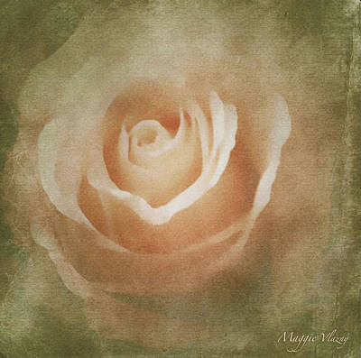 Victorian Vintage Pink Rose Poster