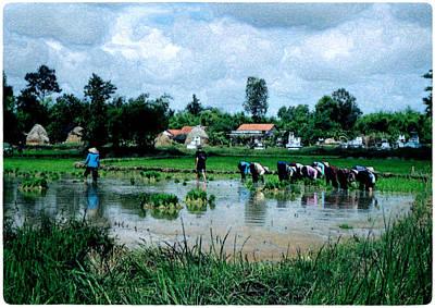 Vietnam Mekong Delta Poster