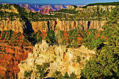 Poster featuring the photograph View From Angel Point  by Bob and Nadine Johnston