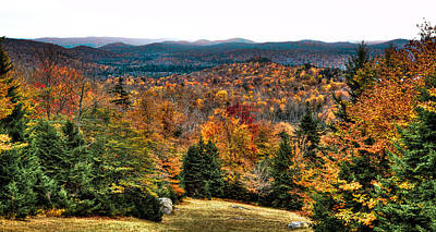 View From The Top Of Mccauley Mountain Poster