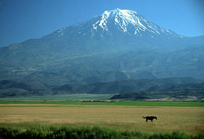 View Of Mount Ararat In Turkey Poster by Cagan H. Sekercioglu