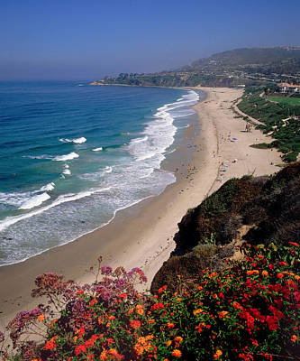 View Of Salt Creek Beach Poster