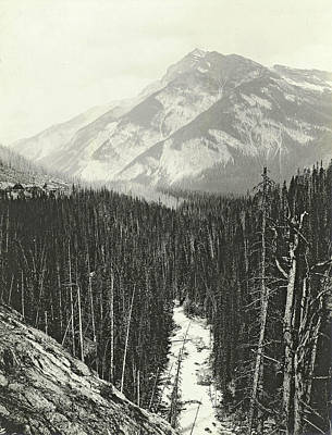 View Over Kicking Horse Canyon Poster