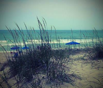 View Thru The Beach Grass Poster