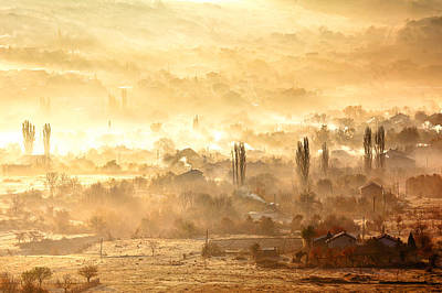 Village Of Gold Poster by Evgeni Dinev