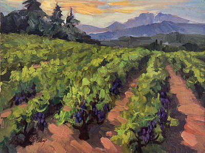Vineyard At Dentelles Poster by Diane McClary