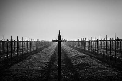 Vineyard Cross Poster