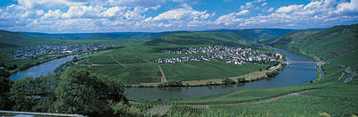 Vineyard Moselle River Germany Poster