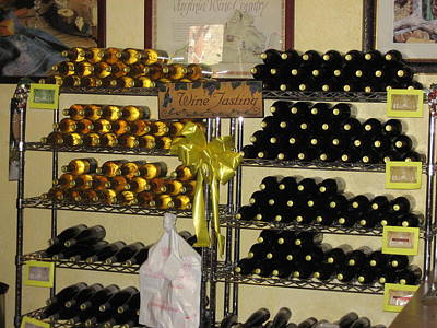 Vineyards In Va - 12125 Poster