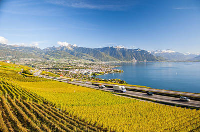 Vineyards Near Montreux Poster