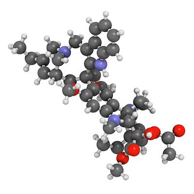 Vinorelbine Cancer Chemotherapy Drug Poster by Molekuul