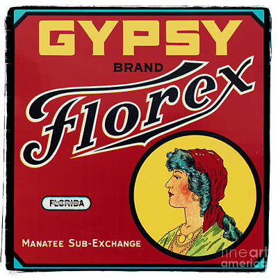 Vintage Florida Food Signs 2 - Gypsy Florex Brand - Square Poster by Ian Monk