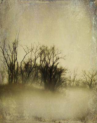 Vintage Fog Poster by Gothicrow Images