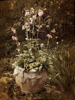 Vintage Planter Poster by Jessica Jenney