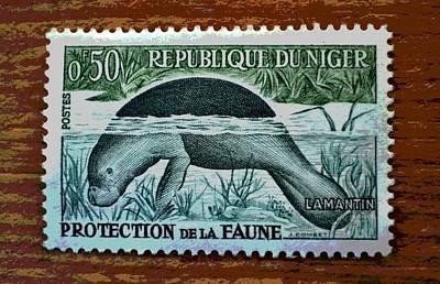 Vintage Republic Of Niger Stamp Poster