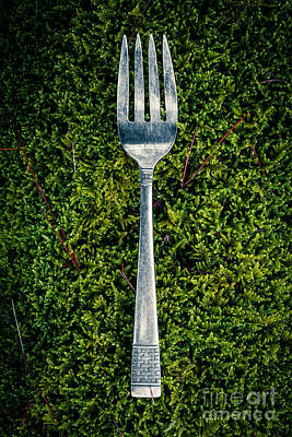 Vintage Silver Fork On Moss Poster by Edward Fielding