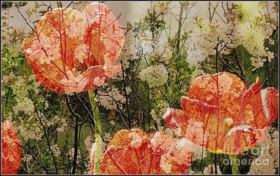 Vintage Tulips Poster by France Laliberte