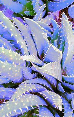 Poster featuring the digital art Violet by Suzanne Silvir
