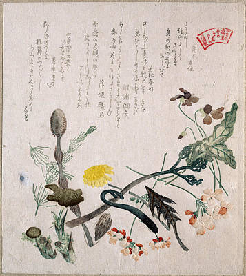 Violets Primroses And Other Spring Flowers Poster by Kubo Shunman