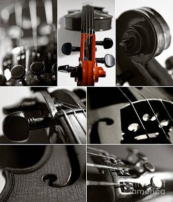 Violin Collage Poster