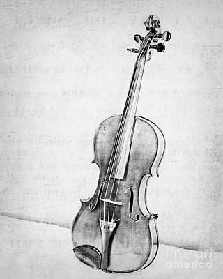 Violin In Black And White Poster