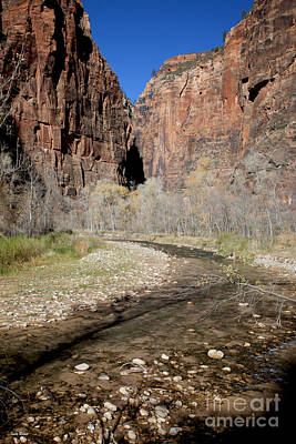 Virgin River Cliffs Poster by Ivete Basso Photography