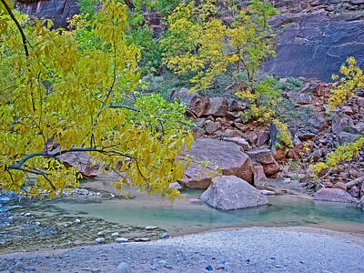 Virgin River From Emerald Pools Trail In Zion National Park-utah Poster