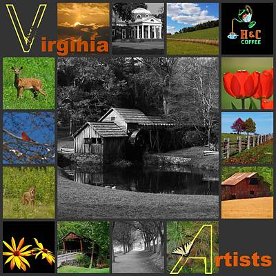 Virginia Artist  Poster by Eric Liller