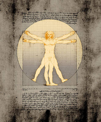 Vitruvian Man 14 Enlightenment Poster by Filippo B