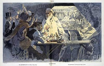 Vivisection Satire, 1911 Poster by Library Of Congress
