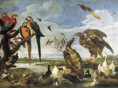 Vospaul De 1596-1678. Variety Of Birds Poster by Everett