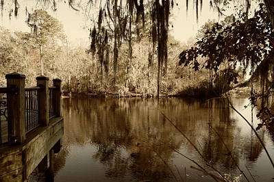 Waccamaw River In Autumn Sepia Poster