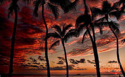 Waikiki Sunset Poster by David Smith