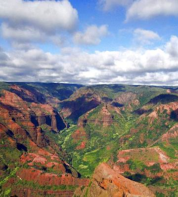 Waimea Canyon Poster by Amy McDaniel