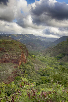 Waimea Canyon Lookout Poster