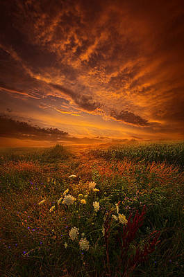Waiting For The Day To Begin Poster by Phil Koch