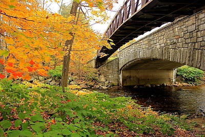 Poster featuring the photograph Walking Bridge In Fall by Amazing Jules