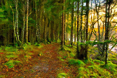 Walking In A Scottish Highland Wood Poster by Mark E Tisdale