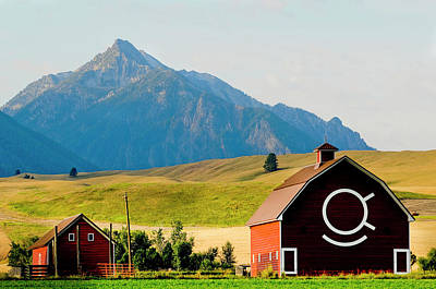 Wallowa Mountains And Red Barn In Field Poster by Nik Wheeler