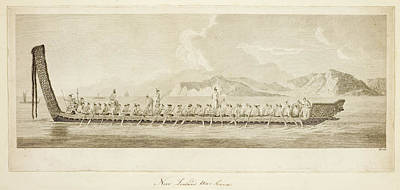 War Canoe Of New Zealand Poster by British Library