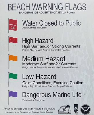 Warning Flags Poster