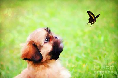 Watching Butterflies Poster