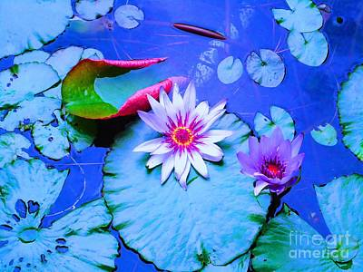 Water Lily I Poster by Ann Johndro-Collins