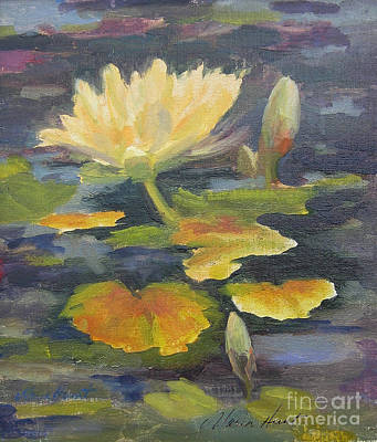 Water Lily In The Fountain Poster by Maria Hunt