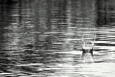 Water Poster by Prajakta P