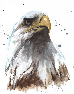 Watercolor Eagle Poster by Alison Fennell