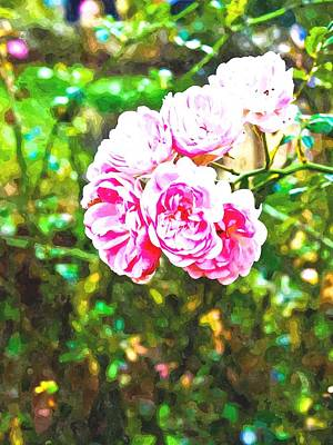 Watercolor Of Pink Fairy Roses In Nature Poster