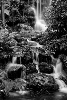 Waterfall At Rainbow Springs Poster by Beverly Stapleton