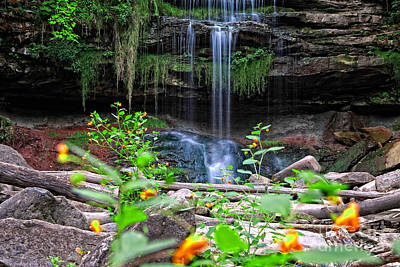 Waterfall Behind Jewelweed Poster by Charline Xia
